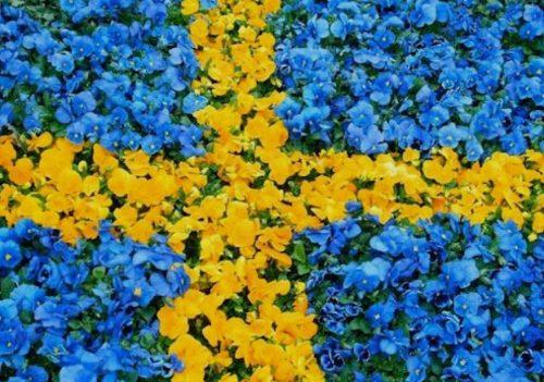 Svenska flaggans dag