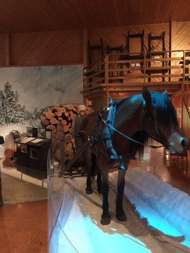 Skogsmuseet häst Lycksele