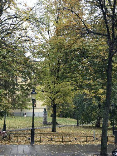 Stockholm höst